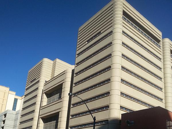 Las Vegas County Jail Mugshots